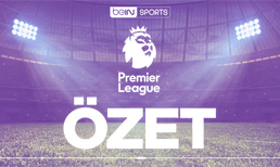 Cardiff City Crystal Palace maç özeti